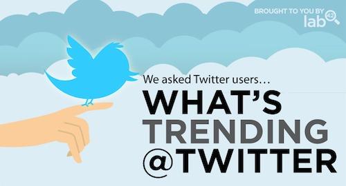 Cómo la gente está utilizando Twitter [infografía] - infografia-twitter-personas