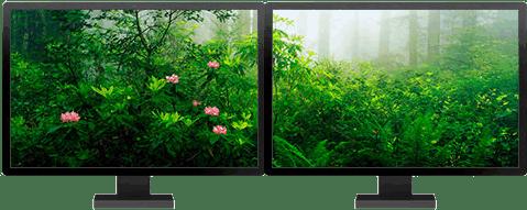 Temas de Windows 8 optimizados para dos monitores - temas-windows-8-bosques