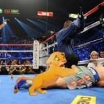Los mejores Memes del knockout de Pacquiáo - enhanced-buzz-31264-1355067697-9