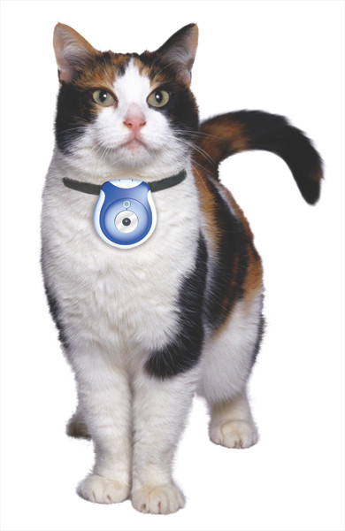 Inventos tecnológicos para tu gato - eyenimal