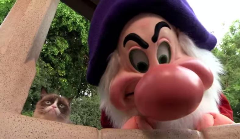 Grumpy Cat va a Disney y no le gusta nada - Grumpy-Cat-Disney