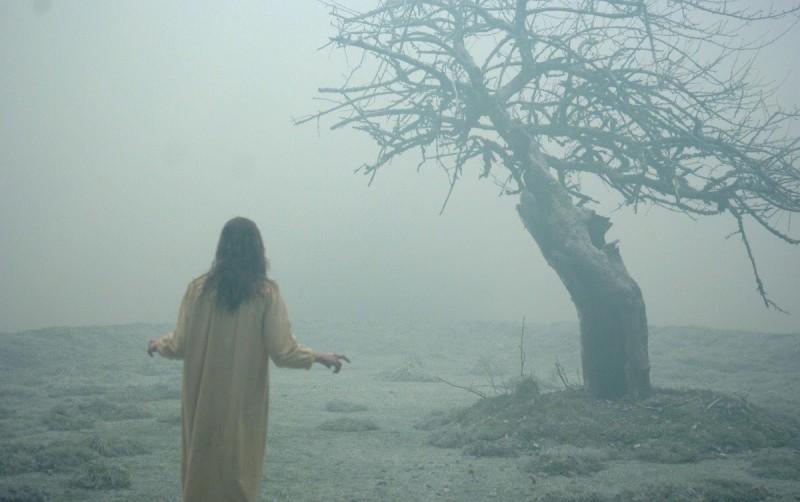exorcismo emily rose 800x502 Películas de terror que puedes ver gratis en línea