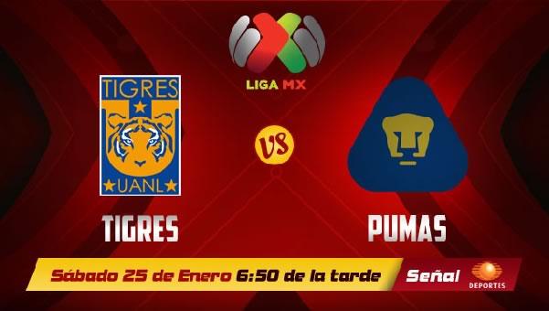 Pumas vs Tigres en vivo, Liga MX Clausura 2014 - tigres-vs-pumas-en-vivo-clausura-2014