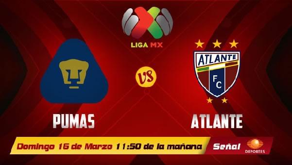 Pumas vs Atlante en vivo, Jornada 11 Clausura 2014 - pumas-vs-atlante-clausura-2014