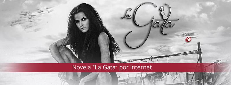 la gata por internet Novela La Gata por internet ¡Revive los capítulos!