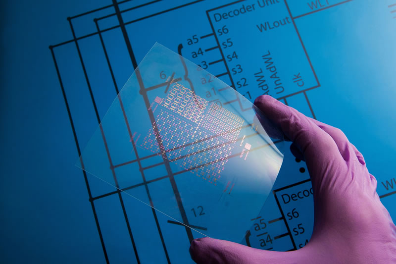 Mexicano crea materiales flexibles que se implantan en el cerebro - materiales-flexibles-para-el-cerebro