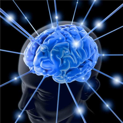equivocarse ayuda memoria Estudio afirma que equivocarse es bueno para la memoria