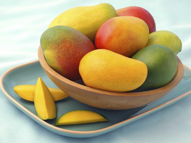 Desarrollan tecnología para mantener al mango en excelentes condiciones - Tecnologia-para-mantener-el-mango