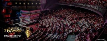 Premios TV y Novelas 2015 por internet este domingo