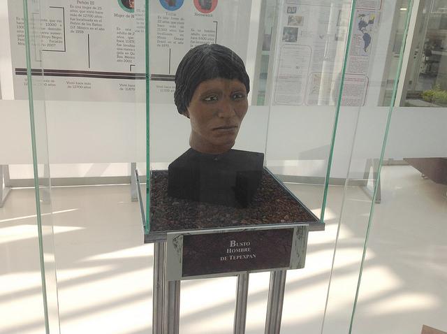 Exhiben cráneos de los primeros pobladores de México - craneos-primeros-pobladores-Mexico