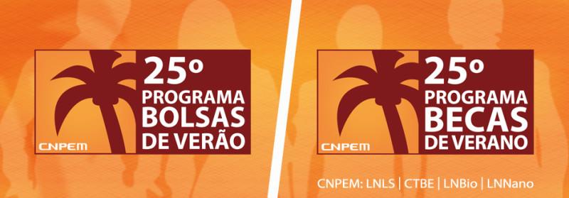 Becas de verano para Universitarios en Brasil - BecasVerano-800x279