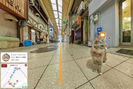 Cat Street View muestra Japón desde la perspectiva de un gato
