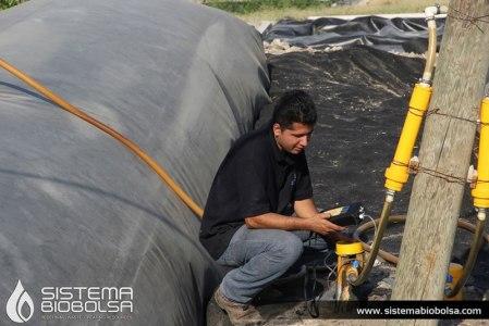 Crean biodigestor que abastece de energía a 3 mil granjas en México y América Latina