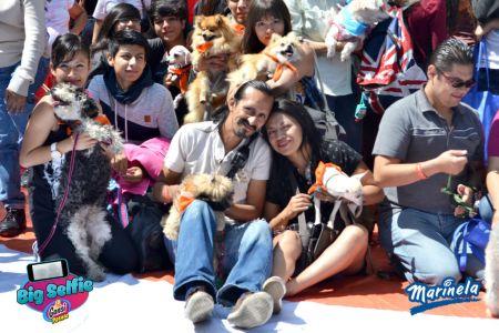 Big Selfie Marinela: evento de convívio entre la familia y sus mascota, culmina con éxito en su primera edición