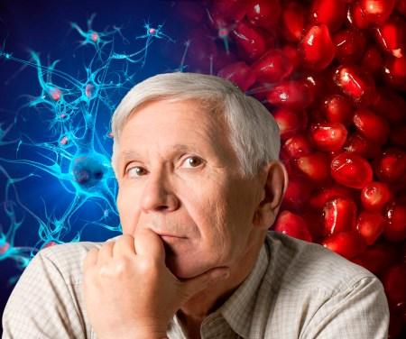 Mediante nanotecnología hacen llegar Omega 5 al cerebro