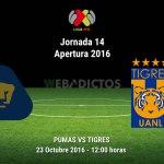 Pumas vs Tigres, Jornada 14 del Apertura 2016 ¡En vivo por internet!