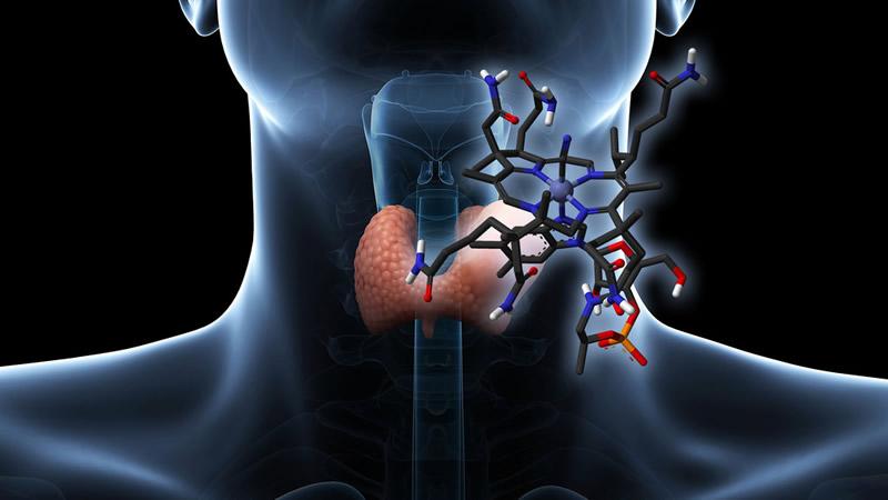 Sintetiza la UNAM compuesto que detecta problemas de tiroides - compuesto-que-detecta-problemas-de-tiroides