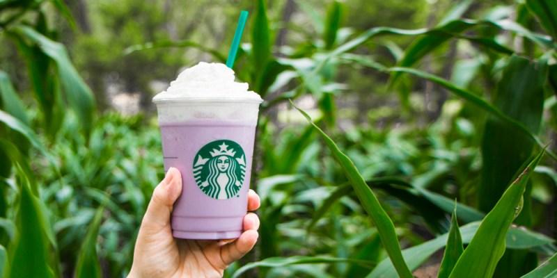 Taro Frapuccino al estilo Starbucks por tiempo limitado - taro-frappuccino-800x400