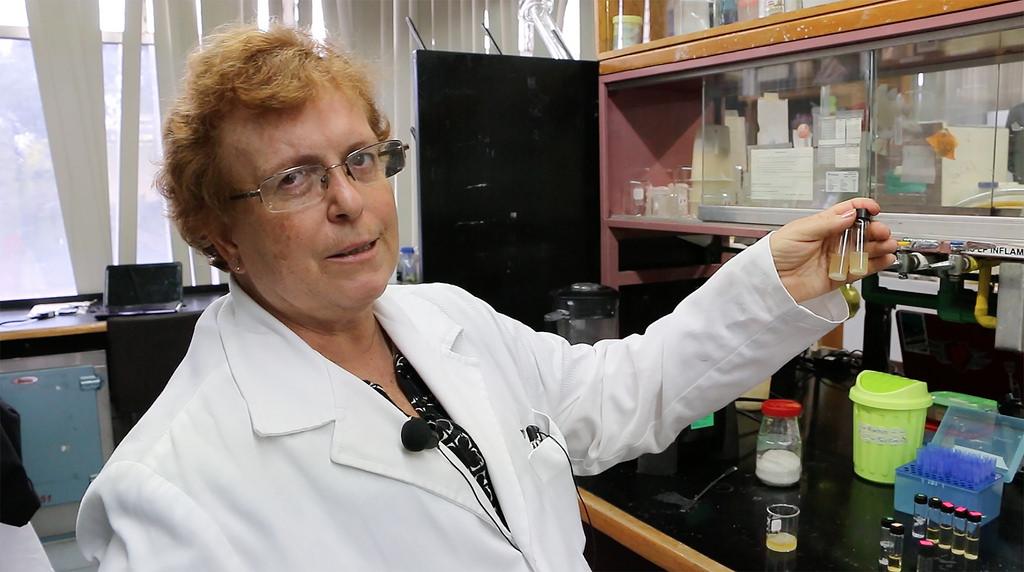 Investigadoras de la UNAM desarrollan enzima que degrada PET - desarrollan-enzima-que-degrada-pet