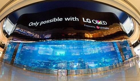 La pantalla OLED de alta definición más grande del mundo es creada por LG en Dubái - lg-open-frame-oled