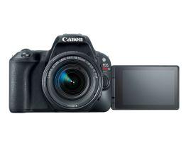 Nueva Canon EOS Rebel SL2: ideal si quieres iniciar en el mundo de la fotografía - eos-rebel-sl2-canon-7