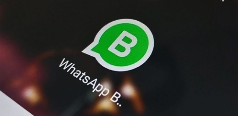 WhatsApp Business: La revolución de la comunicación - whatsapp-business-800x392