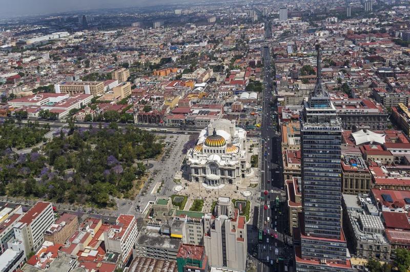 jacaranda trees mexico city 1 800x531 Los distintos sitios para capturar las mejores fotos de jacarandas en CDMX
