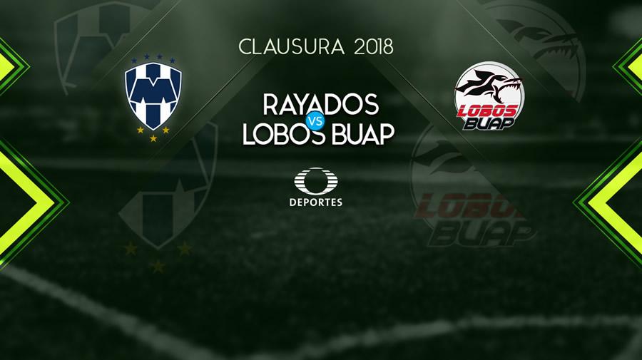 Monterrey vs Lobos BUAP, Jornada 16 del Clausura 2018 ¡En vivo por internet! - monterrey-vs-lobos-buap-j16-clausura-2018