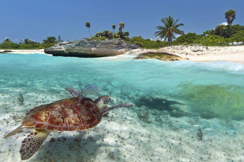 Booking.com revela los meses más baratos para conocer Latino América - playa-del-carmen-mexico-2-800x534