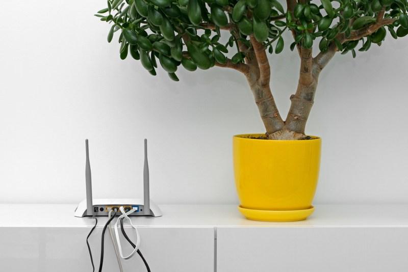 ¿Qué tanto saben los mexicanos de la seguridad del router? - seguridad-del-router-800x534