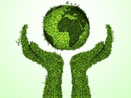 Cuatro artículos para ser ecológico y no morir en el intento