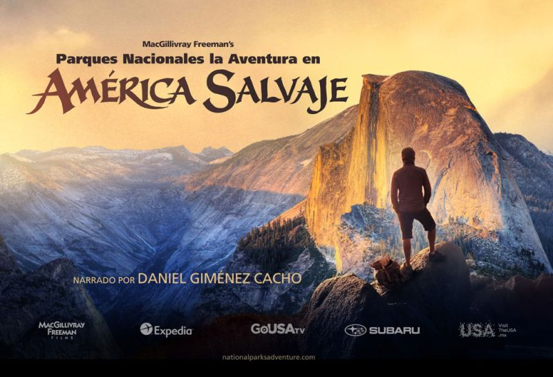 Conoce los documentales que se exhibirán en Cinepolis a partir del 14 de diciembre - america-salvaje-800x545