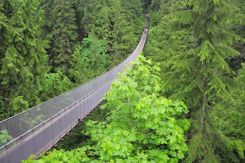 5 experiencias turísticas imperdibles para 2019 - puentes-colgantes-vancouver-800x534