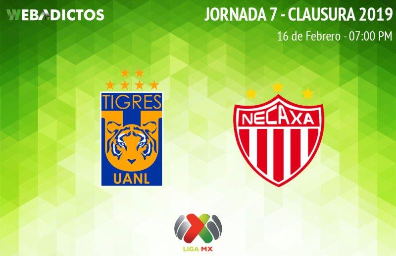 Tigres vs Necaxa, J7 del Clausura 2019 ¡En vivo por internet! - tigres-vs-necaxa-clausura-2019