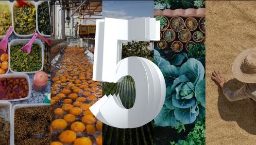 IBM presenta las 5 tecnologías que cambiarán al mundo en los próximos 5 años - ibm