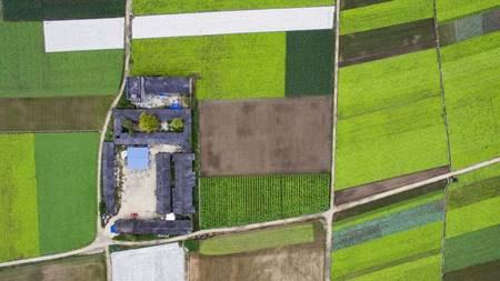 Corteva Agriscience despliega la mayor flota de drones agrícolas del mundo - corteva-agriscience_1