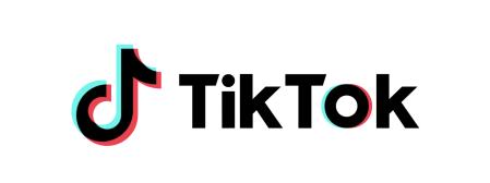 TikTok Rewind: el top de contenidos 2019 en México