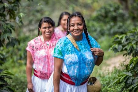 Mujeres que cultivan café en Puebla