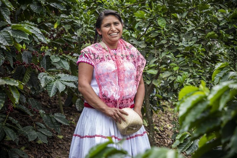 Mujeres que cultivan café en Puebla - natalia