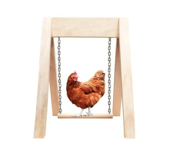 Productos raros que se venden en Mercado Libre - columpio_para_gallina