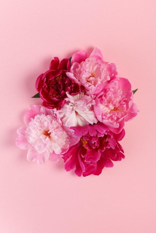 Las mejores flores para regalar o para decorar tu propio espacio - peonias-534x800