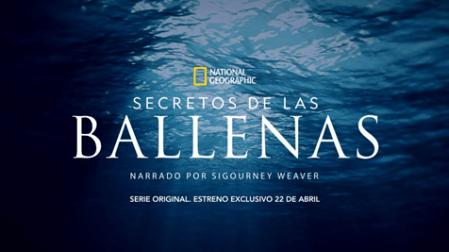 Disney Plus revela tráiler de su nueva Serie Original Secretos de las Ballenas