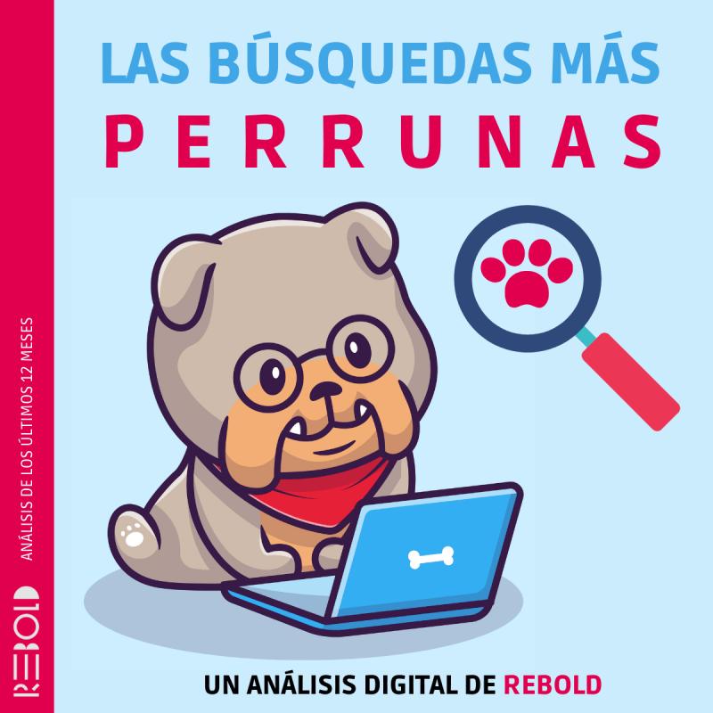 Los productos o servicios más buscados en internet sobre las mascotas en México - las-busquedas-mas-perrunas-rebold-800x800