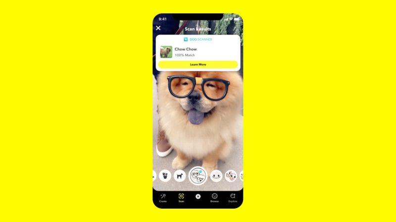 Día Mundial de los Animales: celebra con el escáner de perros de Snapchat