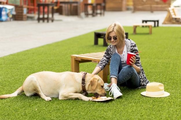 Uma mulher e um cachorro sentados no gramado