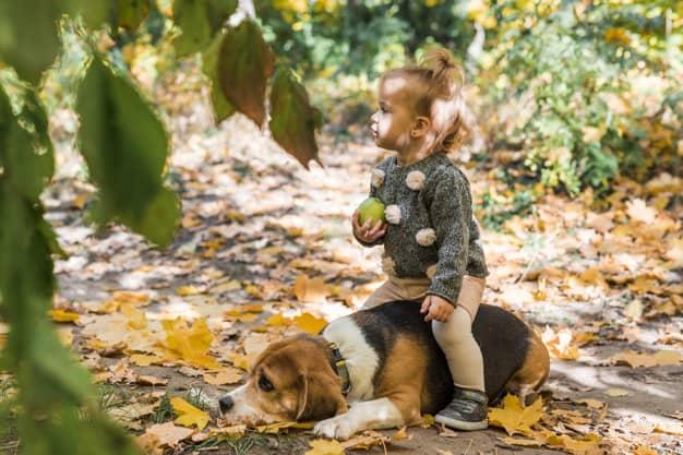 Menina sentada em cima do cachorro