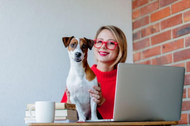 Saúde mental: Cães ajudam a combater distúrbios como depressão