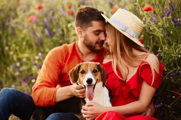Casal e um cachorro com língua pra fora