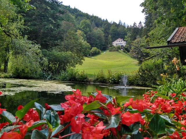 Villa im Krausegarten und Forellenteich