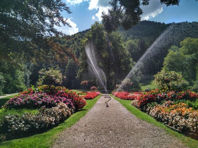 Der Krausegarten, ein besonderer botanischer Garten